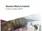 Remote Work in Ireland Report Published by DBEI